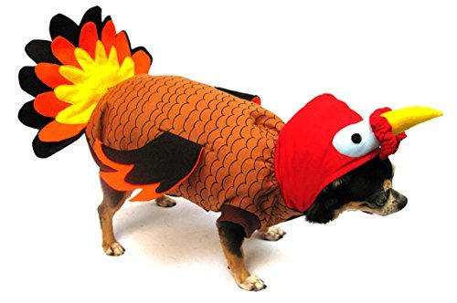 Puppe Love Türkei Deluxe für Thanksgiving/Halloween-Kostüm für Hunde, Size 2 (9.25