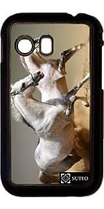 Coque Samsung Galaxy Y S5360 – Chevaux - ref 8