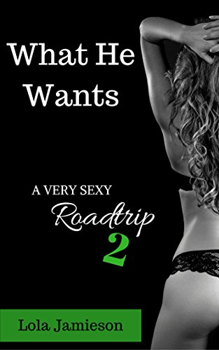 What He Wants: A Very Sexy Roadtrip Truck Driver Edition 2 (The Very Sexy Series Book 2) (English Edition)