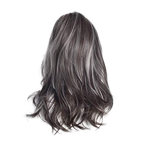 ür Frauen,Rifuli® Grau Long MulticoloGradient Perücke gewellte lockige synthetische Perücke Deep Wave Narutal Color Synthetic wig ()