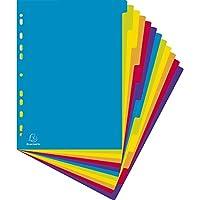 Exacompta Campus A4 maxi PP Dividers, 12 Part, Multi-Coloured