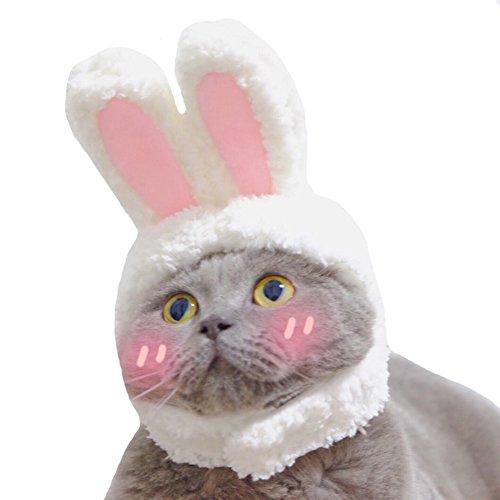 Kostüm Hunde Bunny Für - PERTTY Kostüm Bunny Kaninchen Hat mit Ohren für Katzen und Kleine Hunde Party Kostüm Zubehör Kopfbedeckung