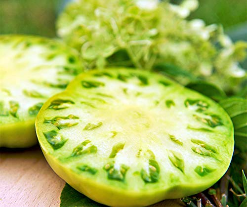 Bobby-Seeds BIO-Tomatensamen Evergreen BIO Portion