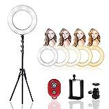 FFYHL Ring licht,LED-Ringfülllicht Hauptschönheits-Schönheits-Licht Handy-Foto-Fotografie Live Selfie-Licht