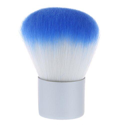 TOOGOO(R) Pinceau de blush / brosse de Fard a joues /outil de Fondation Poudre brosse cosmetique maquillage (argent+bleu)