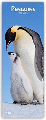Penguins – Pinguine 2019 (Slimline-Kalender)