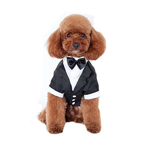 Keysui primavera estate abito con piccolo cane vestiti Pet Dress Suit Teddy maschio cane per feste