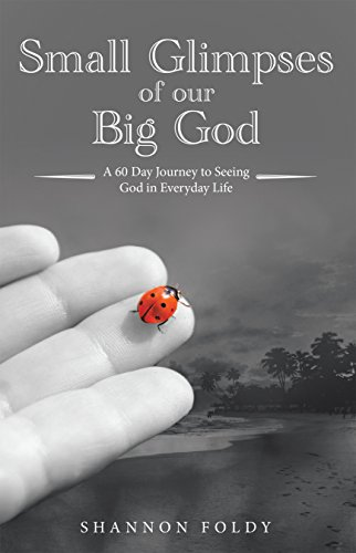 foldy Small Glimpses of Our Big God: A 60 Day Journey to Seeing God in Everyday Life (English Edition)