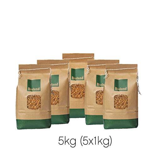 erpaket Brot 5x1kg - direkt vom Bauernhof - aus kontrolliert biologischem Anbau ()