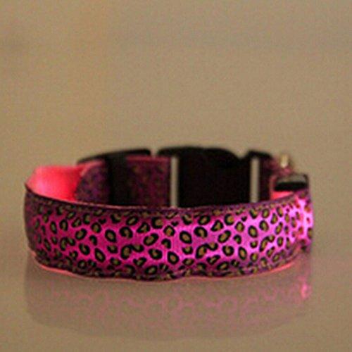 Evtech (tm) Leopard-Druck Nacht Safety Lead-Kragen-Hundekatze-Haustier-Halsband verstellbar mit grellem Licht-up Pink - S (Männliche Leopard)