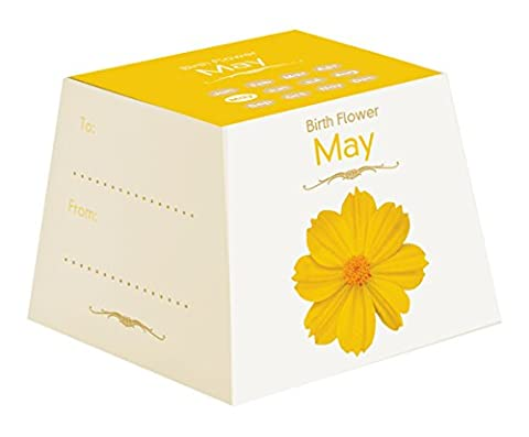 Gift Republic May Birth Flowers