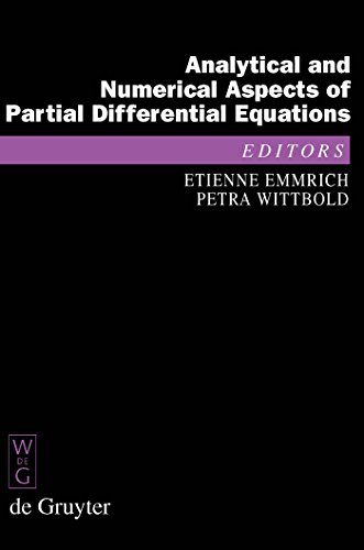 Analytical and Numerical Aspects of Partial Differential Equations: Notes of a Lecture Series (De Gruyter Proceedings in Mathematics) (English Edition)