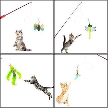 HO2NLE Plume Jouet pour Chat Canne a Peche Chat Baton Baguette INOX Interactif Rétractable + 5pcs Recharges de Plumes Cat Toy Jouet pour Chat et Chaton (en INOX)
