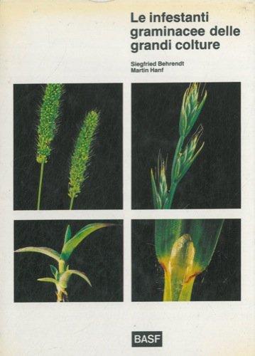 Le infestanti graminacee delle grandi colture. Determinazione prima della fioritura.