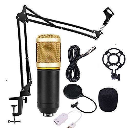 HJJH Kondensatormikrofon-Bundle mit Scherenarmstativ Universalmikrofonzubehör Shock Mount, für Studioaufnahmen und Brocasting (NB-35)