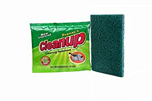 Pranay Cleanup's Pack of 12 Green Colored Large Sized Nylon Scrub Pad