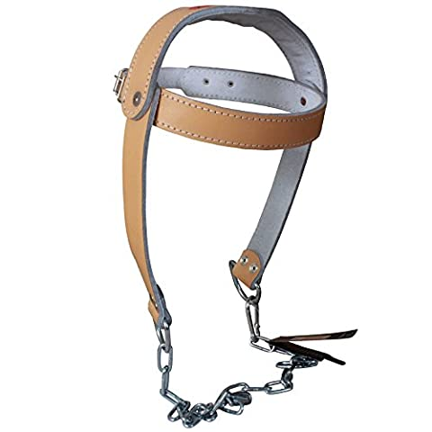 TurnerMAX Cowhide Leather Head Harness Neck Strap Dipping Building Heavy