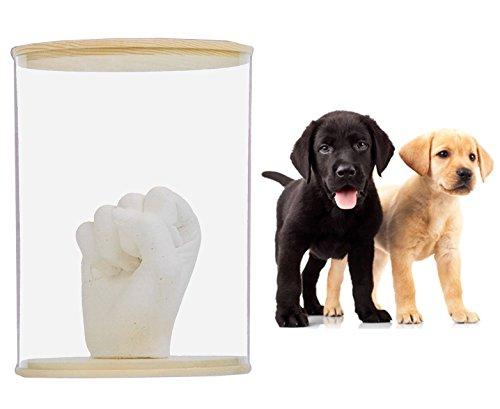 3-D Bastelset Pfotenabdruck z.B. für Katze und Hunde - incl. Rahmen - für Tiere / Tier Haustiere - Ton Abdruck gießen Gipsformen Gips Form Abdruckset