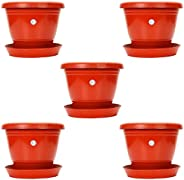EaglesFord 8 Inch Planter Pot Pack of 5 - Terracota