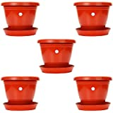 Kraft Seeds Gate Garden 7-inch, 18cm Plastic Flower Plant Pots/Container Indoor, Red Set of 5 Planters with Drainage Trays Modern Pound Decorative Gardening Pot Plants, Succulents, Flowers Seeds