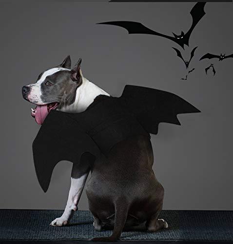 WORDERFUL Halloween-Kostüm für Hunde, Fledermausflügel, Flügel, für Halloween, Schwarz, S, schwarz