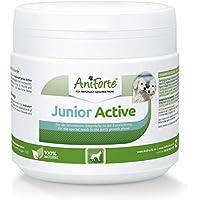 AniForte Junior Active para cachorros y perros jóvenes 250g - Para el desarrollo de huesos, tendones, ligamentos y dientes. Suplemento para cachorros con calcio, vitaminas y minerales