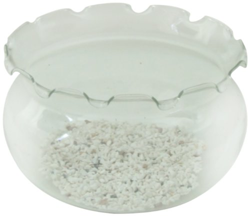 Aquarline Glass Goldfish Bowl with a Fancy Fluted Neck, 7 Liter