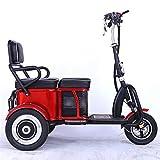 CZALBL Triciclo Elettrico Adulto, motorino Elettrico a Tre Ruote in Lega di Alluminio, Adatto per Anziani o disabili