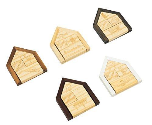 Professor Puzzle Der Kollektion Einstein-Einstein 's House Rätsel S/s-kollektion