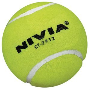 NIVIA CT-3812 Cricket tennis ball (6 pieces)  available at amazon for Rs.369