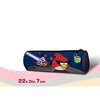 Portatodo Redondo Angry Birds Space