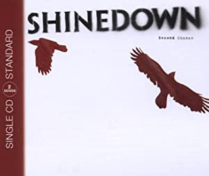 Shinedown In concert