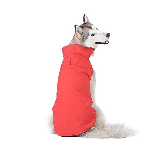 Bwiv Abrigos para Perros de Invierno Chaqueta Impermeable Forrado de Polar con Apertura para Correa Rojo 4XL