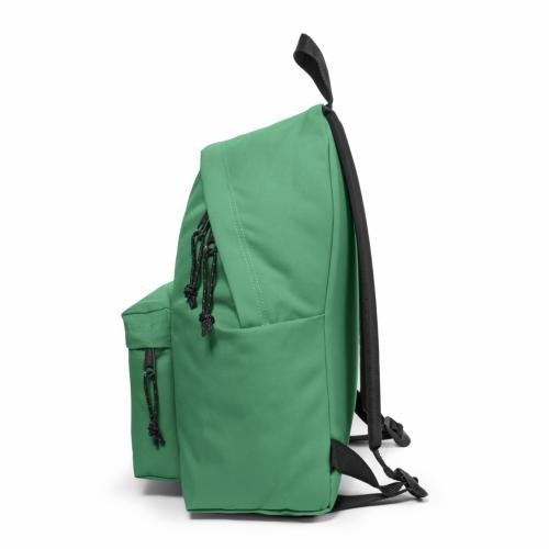 Eastpak ,  Daypack schwarz schwarz Organic Green