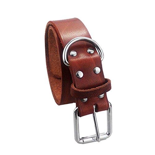 cuoio-di-lusso-heavy-duty-soft-touch-di-base-classic-collari-per-medie-e-grandi-cani-brown