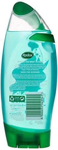 Radox Refresh Eucalyptus & Citrus Oils Shower Gel/ Shampoo