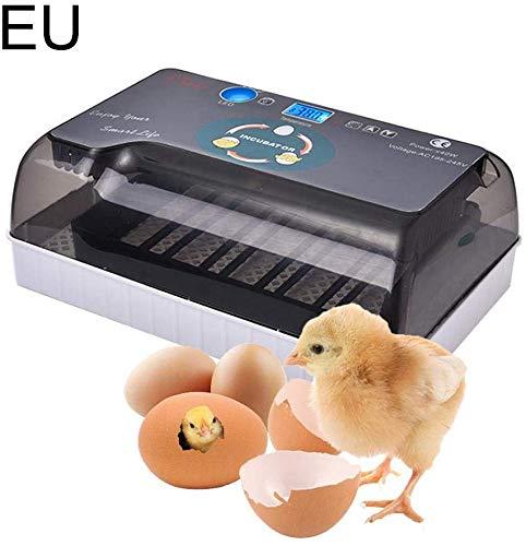 Ksruee Brutmaschine Vollautomatisch Hühner Eier Brutgerät, mit Effizienter LED Beleuchtung Feuchtigkeitsfest Energiesparend Kühltechnologie bis 35 Eier