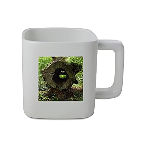 11oz square shaped mug with Big hollow trunk of a cut down tree