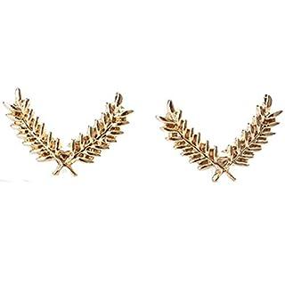 ACENT Frauen-Brosche 6.3 * 2.17cm steinschmätzer Collar