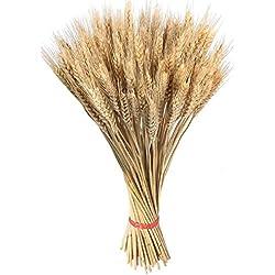 100 piezas de trigo seco para manualidades, flores artificiales de alta simulación de hojas de trigo para decoración de casa, boda, fiesta