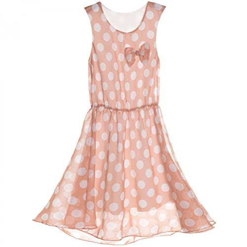 BEZLIT Mädchen Kinder Spitze Kleid Peticoat Fest Kleider Sommerkleid Kostüm 20481 Lachs Größe 140