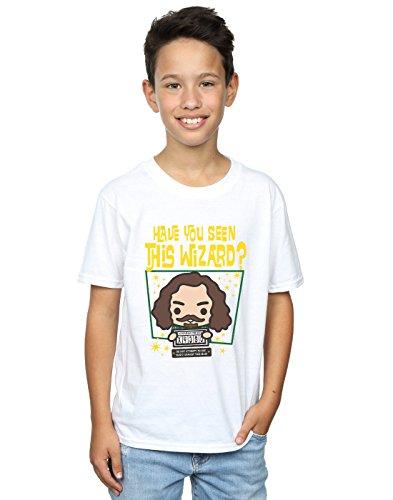 Harry Potter Niños Sirius Black Azkaban Junior Camiseta 12-13 Years B