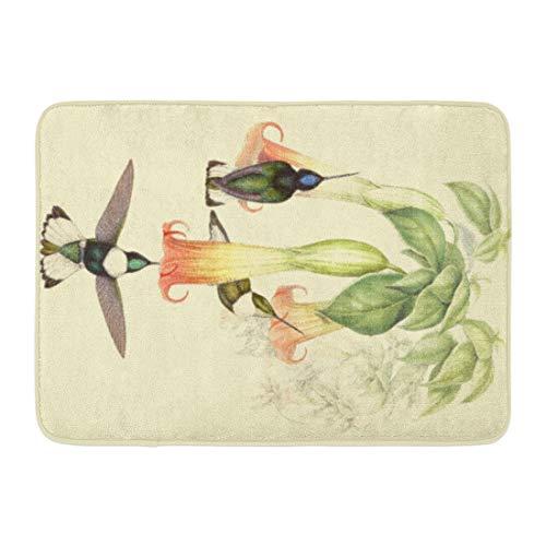 LIS HOME Badematte Tiere Kolibri Vögel Wildlife Blumen Gould Vintage botanische Engel Badezimmer Dekor Teppich -