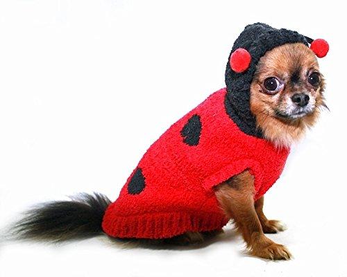 Kostüm Bug Dog - Hip Doggie HD-7CHLB-M Chenille Lady Bug - Hund Kostüm Pullover, M