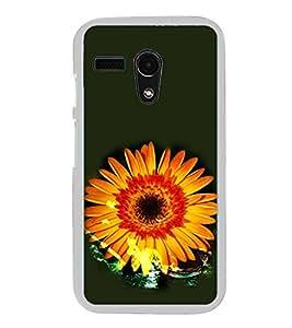 ifasho Designer Phone Back Case Cover Motorola Moto G :: Motorola Moto G (1st Gen) :: Motorola Moto G Dual ( Cheetah 4 Eyes Angry Face )