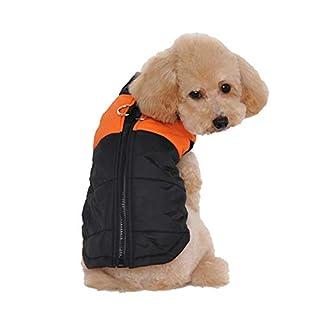 Ancdream Winter Warm Pet Hund Kleidung klein Wasserdichte Hundemantel Jacke Winter Gesteppt Gepolstert Puffer Pet Kleidung