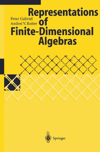 Representations of Finite-Dimensional Algebras (Encyclopaedia of Mathematical Sciences)