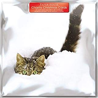 Tabby Cat in Snow Charity Christmas Cards - (3540) - Pack of 6 Cards Sold In Support of British Heart Foundation, Age UK, Tenovus, Motor Neurone Disease, NSPCC and Diabetes UK