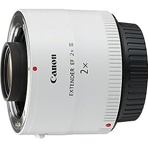 Canon-Extender-EF-2-x-III-Teleobjektiv-mit-Zoom-Wei