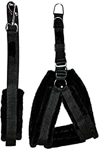 Foodie Puppies Fur Body Harness & Leash Set (Black, Small, 0.75inch)